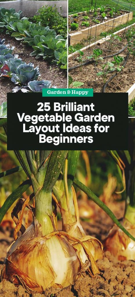 25 Brilliant Vegetable Garden Layout Ideas for Beginners