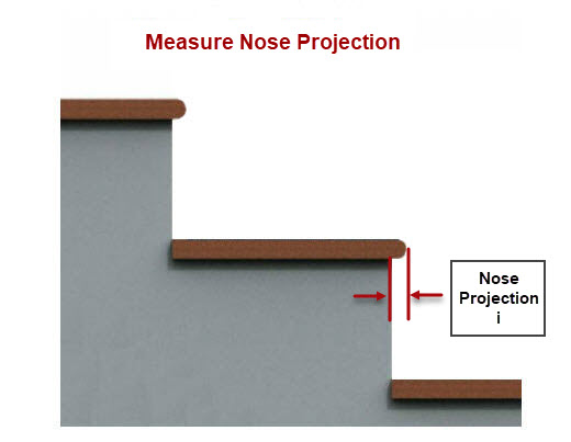 Measure the Nose Projections
